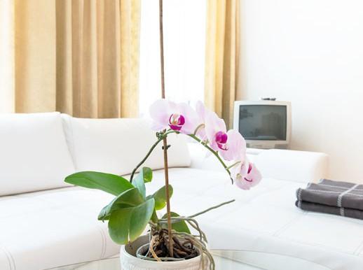 apartmentsinwien-ferienapartment-gabrieles_apartment-06